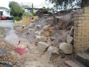 Early shot of our driveway embankment. Note the sandy Beaumaris soil!