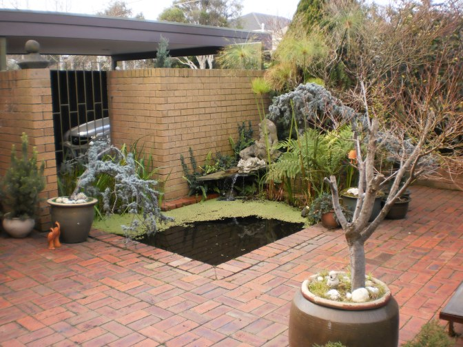 The garden of an architect - J Davidson 2012