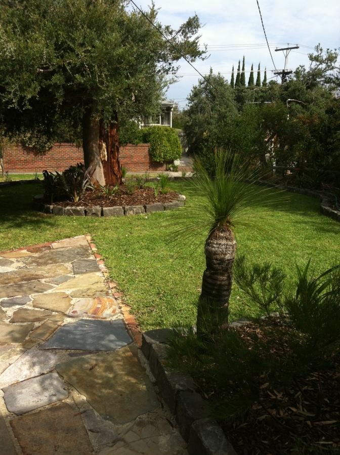 Our MCM Front Garden - J Davidson