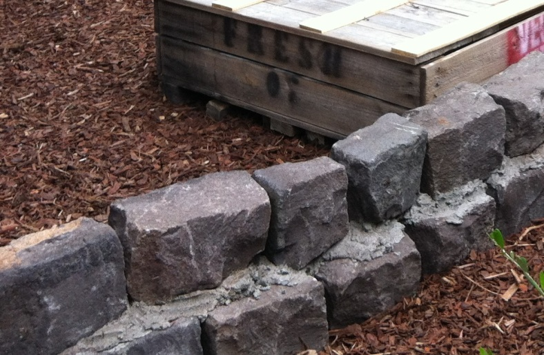 Part of a low bluestone wall in our veggie garden (this is the back)