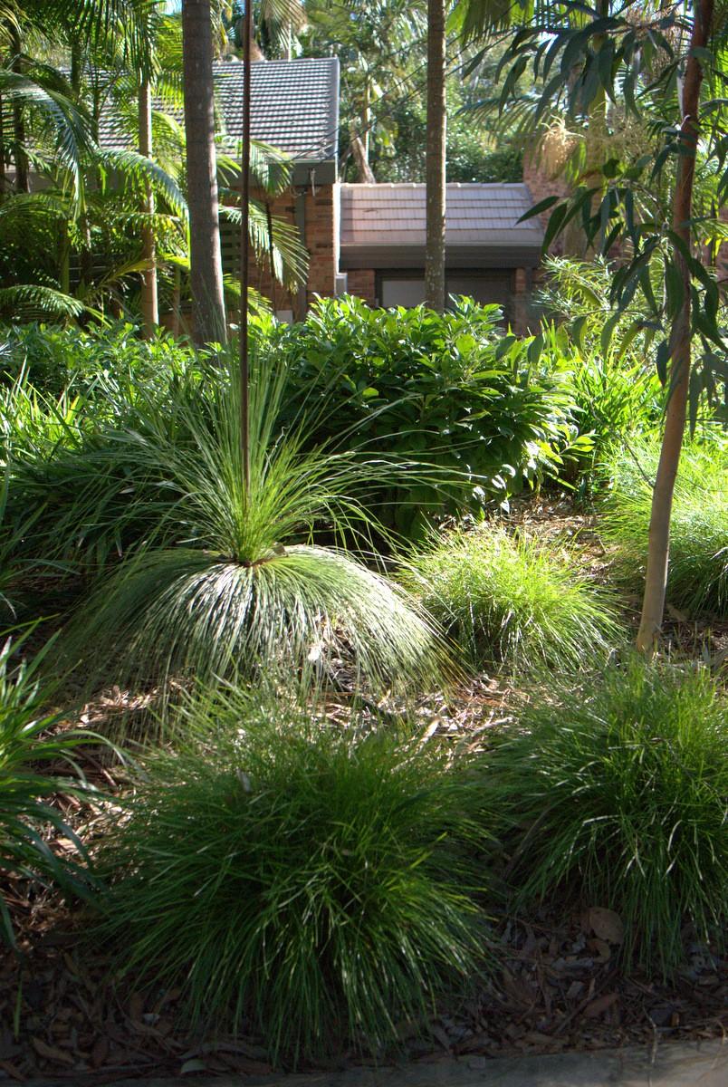 Stunning Use Of Australian Natives Mallee Design Grass