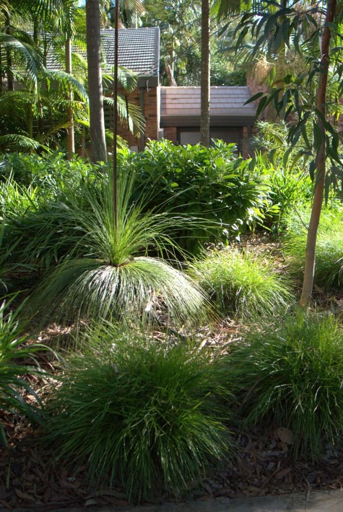 Designing A Native Plant Garden on designing a shrub garden, designing a butterfly garden, designing a bulb garden, designing a bird garden, designing a drought tolerant garden,