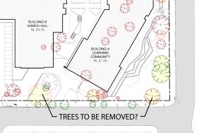 tree-detail-2